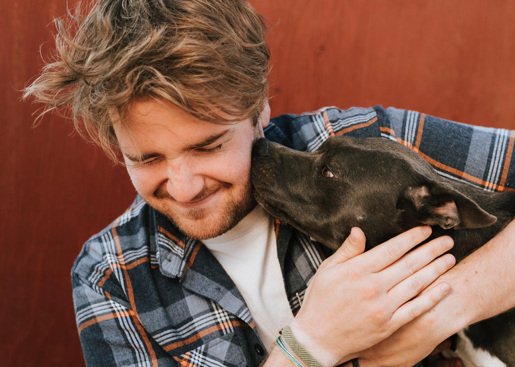 Un gruppo di amici e l'amore per i Terrier di tipo Bull